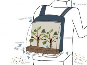 plant-bag-2-537x403